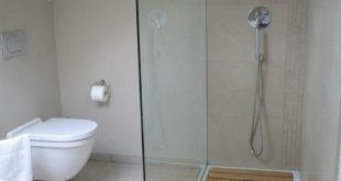 10 Concepts About Walk-in Shower With Seat & Without Seat [Elderly Friendly] Ta...